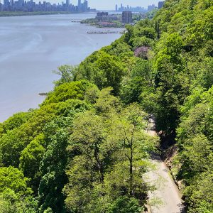 River Road – NYC Road Cycling Training Ground